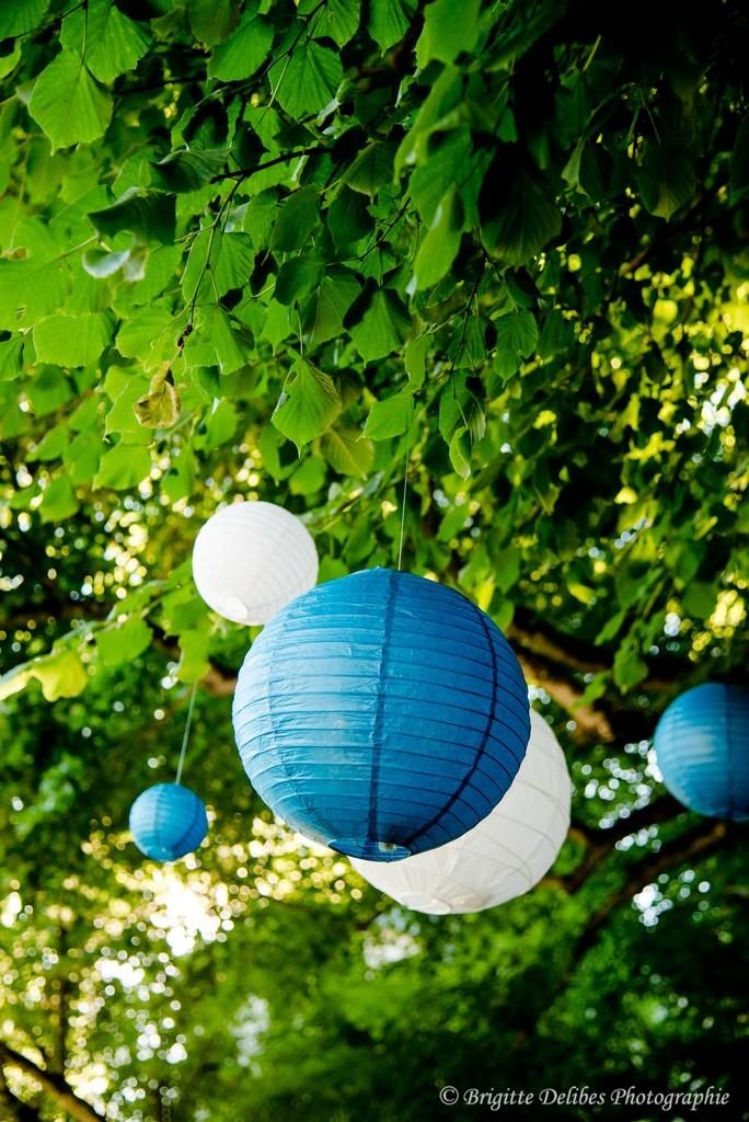 décoration extérieure mariage, décoration arbre mariage