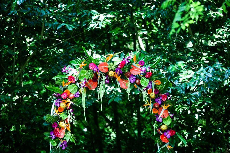 arche exotique, cérémonie laïque, fleurs colorées, mariage thème tropique