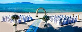 Com'Une Orchidée, wedding-planner pour lieux de mariages féériques et magiques